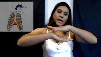 Curso de Canto Online – 1