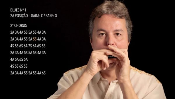 Curso Online de Gaita Diatônica
